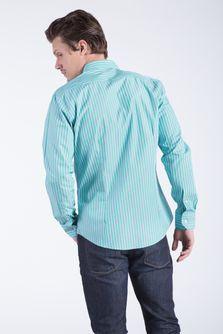 Camisa-Celery