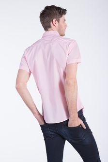 Camisa-Dijon