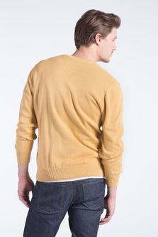 Sweater-Ginger